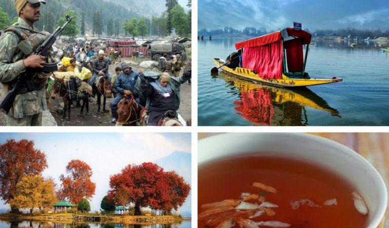 कश्मीर और चिनार : एक अनसुनी पुकार